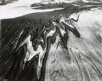 Medial moraine between Steller Glacier and Bering Glacier, Alaska