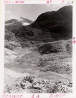 Herbert Glacier, Alaska, United States