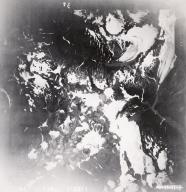 Unknown glaciers next to Johnson Glacier, Keani Peninsula, aerial photograph FL82 Alaska, United States