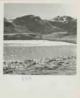 Plateau Glacier, Alaska