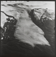 Sargent Ice Field, Alaska
