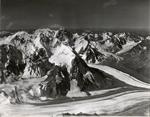 Glaciers near Hess Mountain and Mount Deborah, Alaska