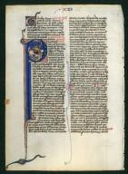 Bible leaf