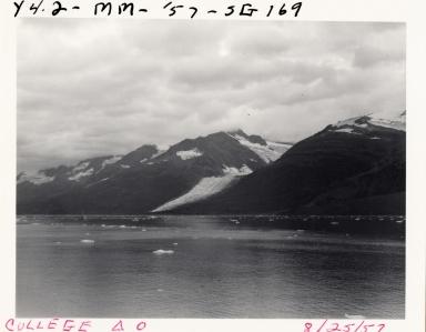 Wellesley Glacier, Alaska, United States