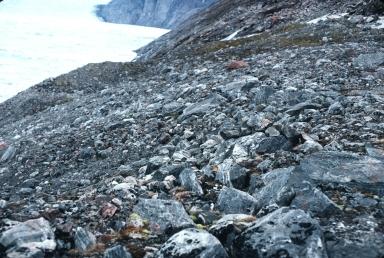 Dietrichson Glacier, Qaasuitsup, Greenland