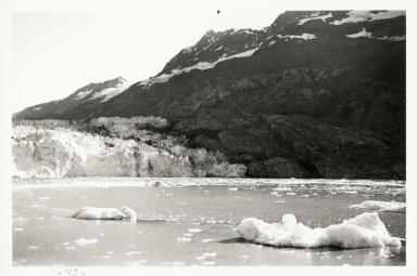 Lamplugh Glacier, Alaska, United States