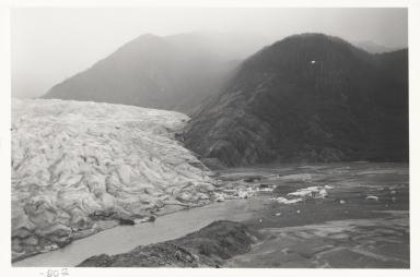 Patterson Glacier, Alaska, United States