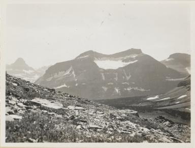 Piegan Glacier, Montana