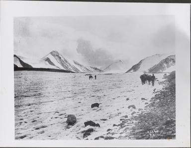 Mount McKinley Glaciers, Alaska
