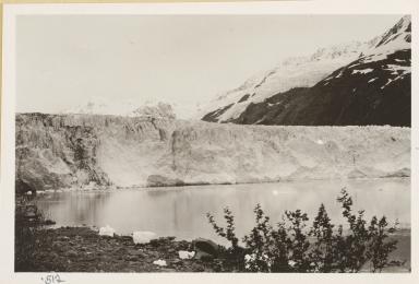 Harriman Glacier, Alaska