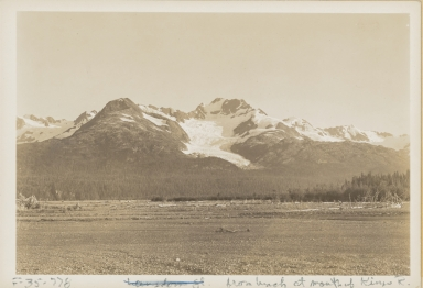Unknown glacier, Kings Bay, Alaska