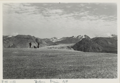 Muir Glacier, Alaska