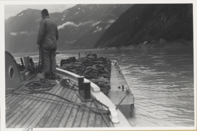 No glacier, Taku Inlet, Alaska
