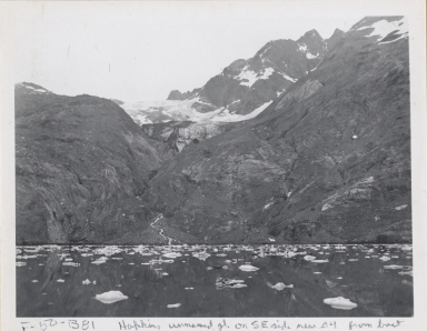 Unknown glacier, Johns Hopkins Inlet, Alaska