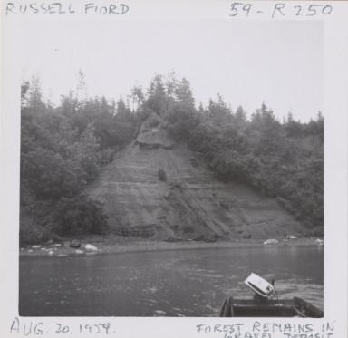Russell Fiord, Yakutat Bay, Alaska