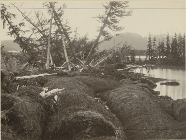 Heather Island, Alaska