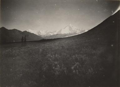 Unknown glacier near Mount Hayes, Alaska