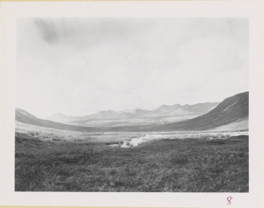 Unknown glacier, near Nenana Glacier, Alaska