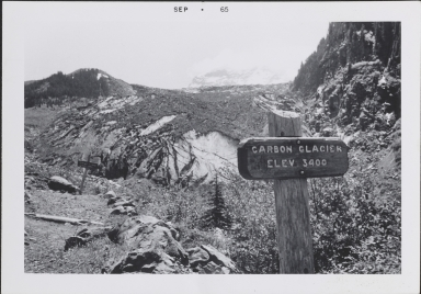 Carbon Glacier, Washington