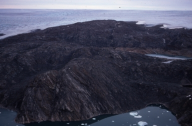 Moss beds near Petowik Glacier, Greenland