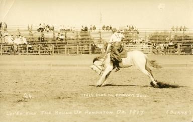 Texas Rose riding bronco