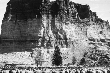 Wyoming, 1900