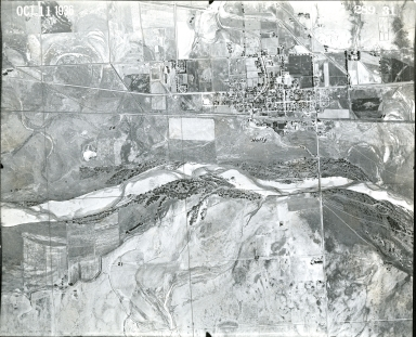 AG 289-31