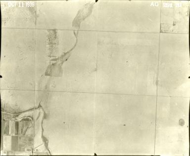 AG 291-31