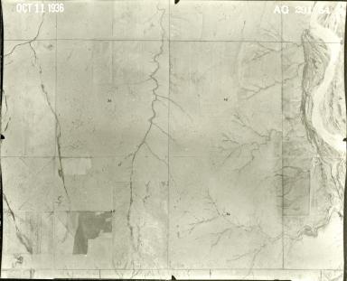 AG 291-54