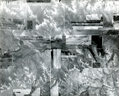 YC 62-19