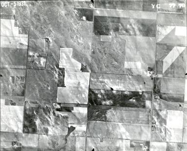 YC 77-79