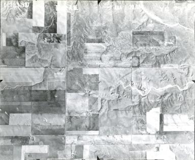 YC 78-10