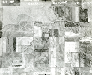 YC 78-77