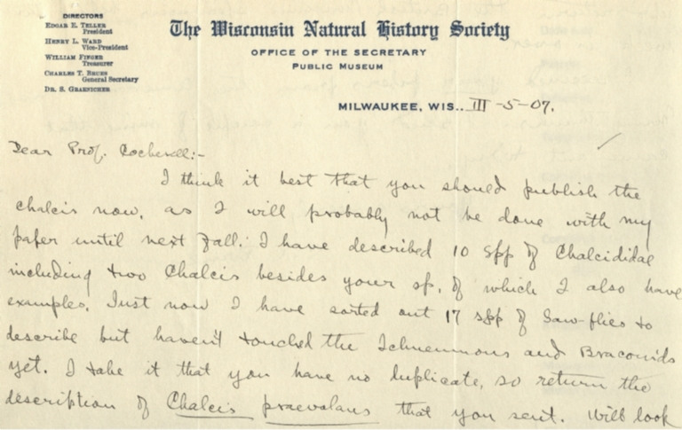 Letter from C. T. Brues to Theodore Cockerell