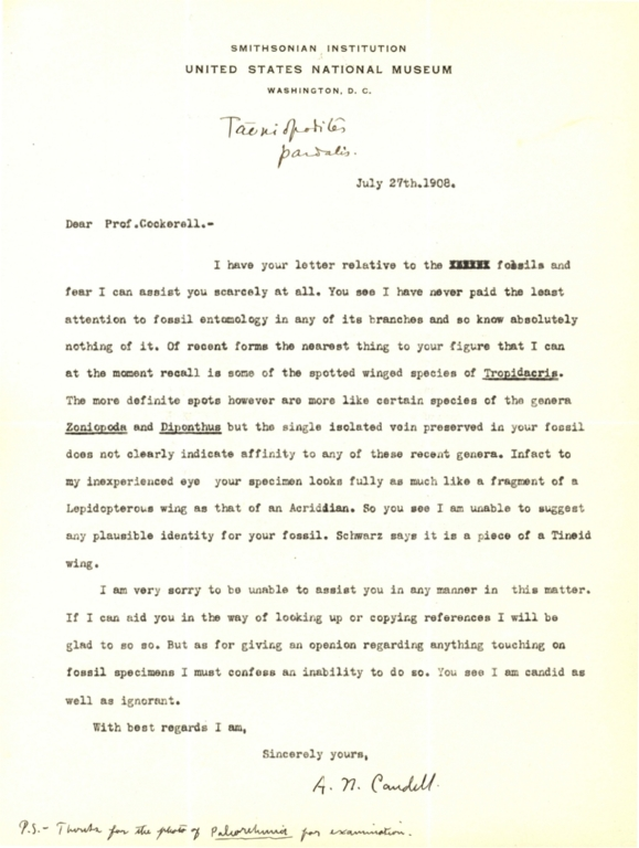 Letter from A. N. Caudell to Theodore Cockerell