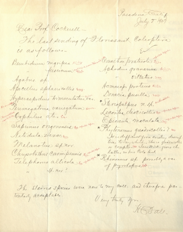 Letter from H. C. Fall to Theodore Cockerell