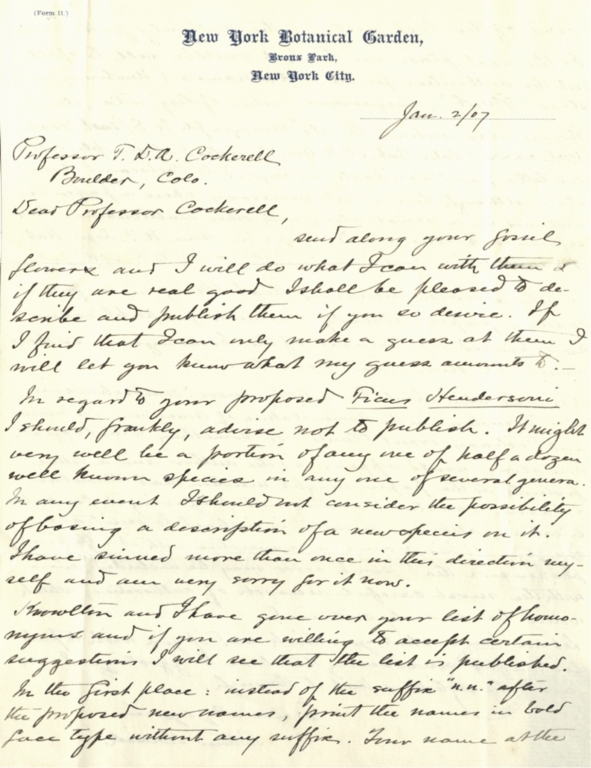 Letter from Arthur Hollick to Theodore Cockerell