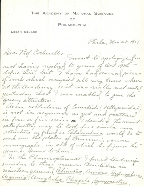 Letter from James A. G. Rehn to Theodore Cockerell re vein structure in Palaeorehnia spp.