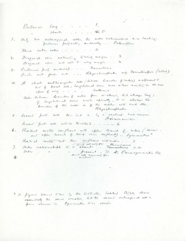 Notes on Nemestrinidae