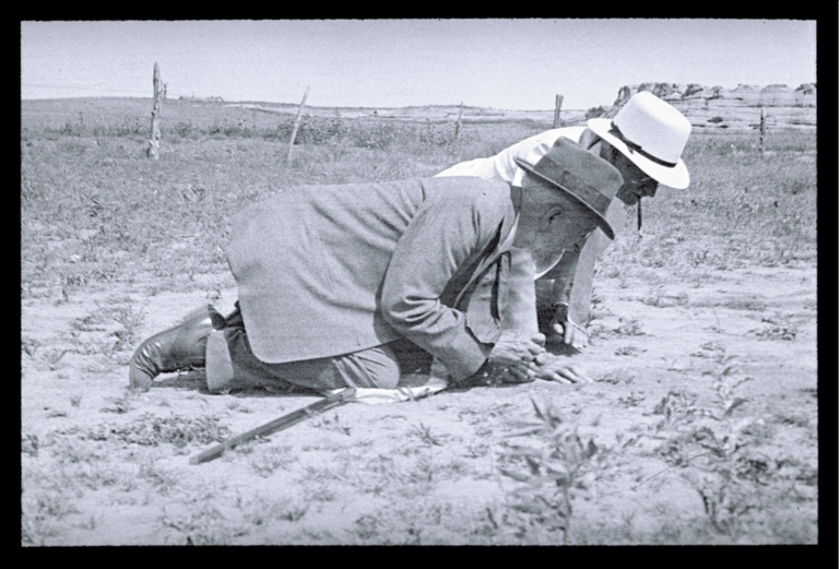 Theodore Cockerell and an unidentified man observing ground bees at a site in Colorado
