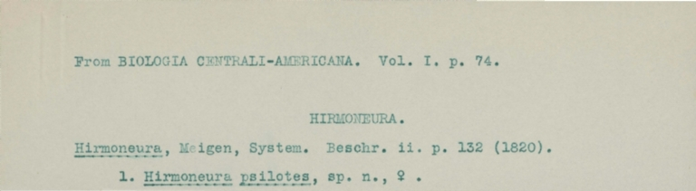Typed notes on Hirmoneura psilotes