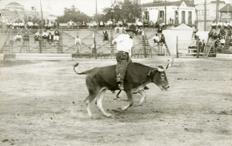 Unidentified rodeo performer riding bull