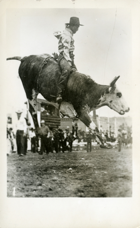 Rodeo performer riding bull