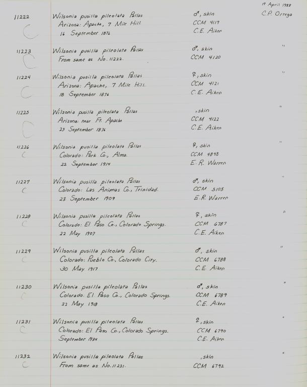 Records 11222, 11223, 11224, 11225, 11226, 11227, 11228, 11229, 11230, 11231, 11232, from University of Colorado Museum Bird Catalog: no. UCM 11100-13523