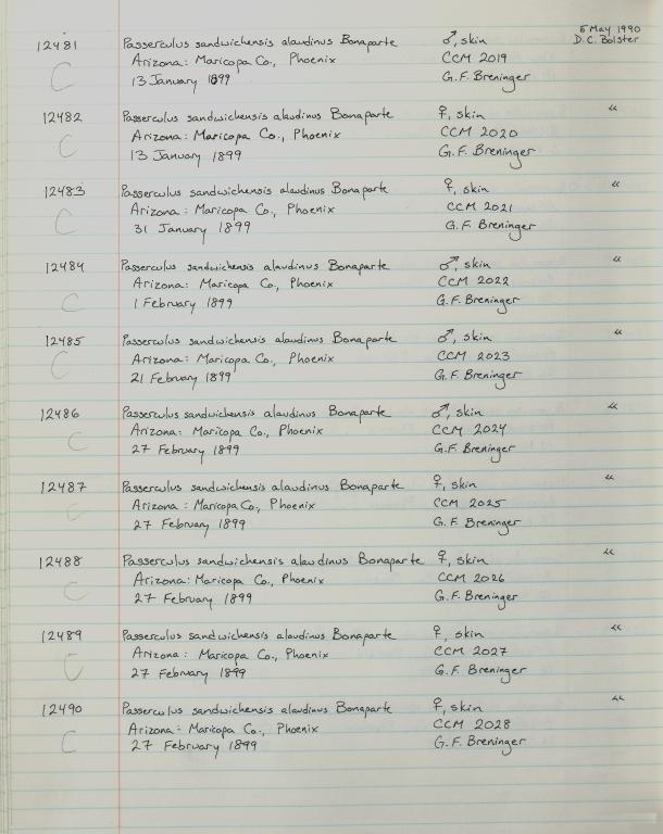 Records 12481, 12482, 12483, 12484, 12485, 12486, 12487, 12488, 12489, 12490, from University of Colorado Museum Bird Catalog: no. UCM 11100-13523