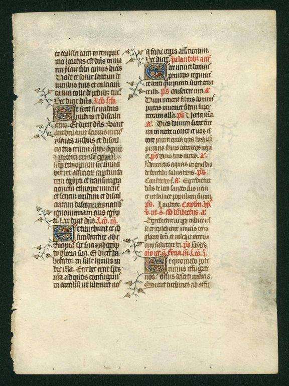 Book of Hours. England [illuminated]