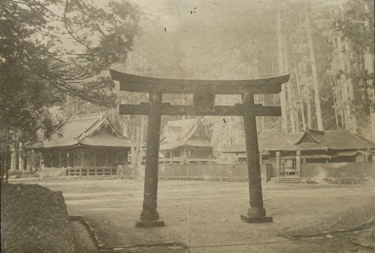 Temple with rows of torii in Japan. Possibly a Toshogu.