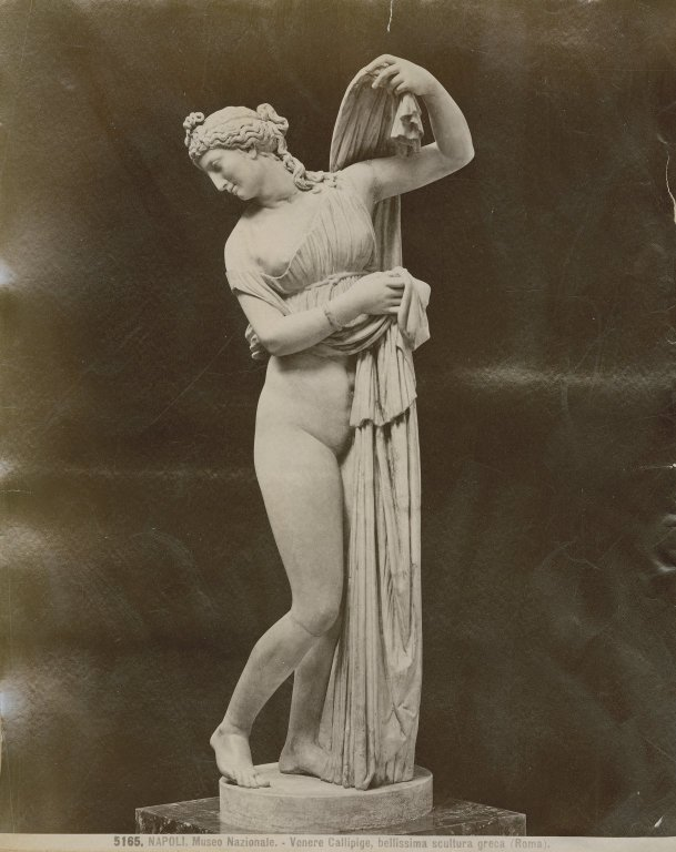 Statue known as Venus Callipyge