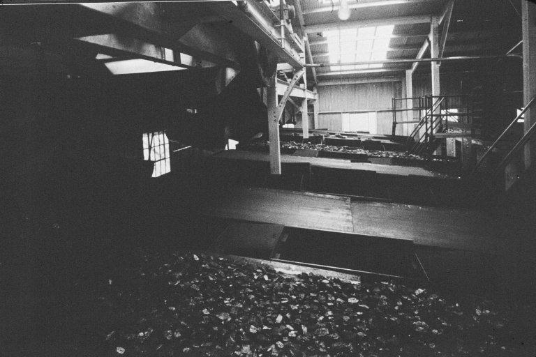 Colony coal co. #2