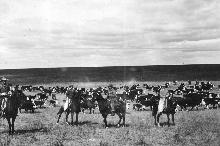Wyoming,1902